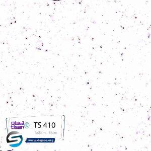 تیسان-۴۱۰TS