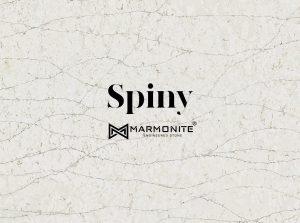 مارمونایت-mv2122-اسپاینی